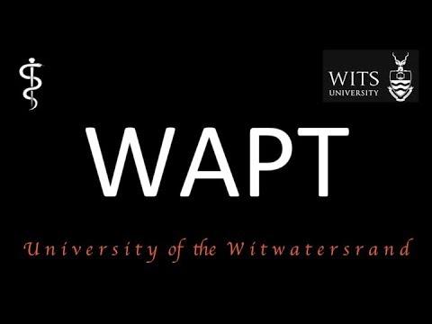 WAPT Advice | Medicine Entrance Exam | Wits University