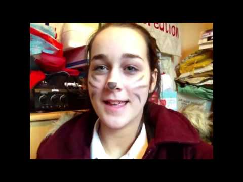 Cat whiskers,exams and hiccups!