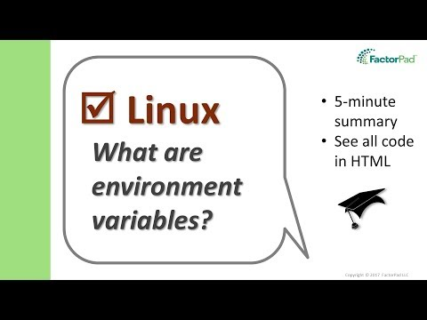 What Are Linux Environment Variables? | Linux Tutorial For Beginners