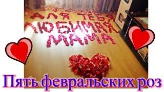 Пять февральских роз