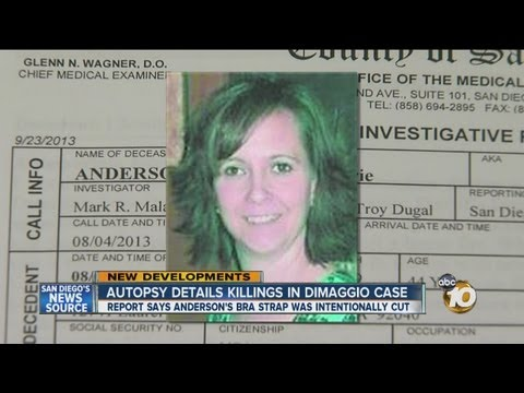 Autopsy report shows Christina Anderson struck in head multiple times
