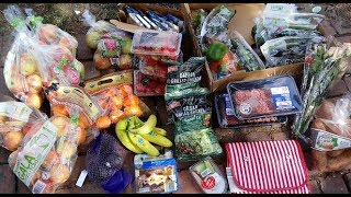 TOO MUCH FREE FOOD! Food Waste In America ~ Dumpster Diving and Extreme Frugality!
