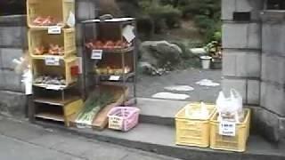 Japan Farmhouse Vegetable Stand