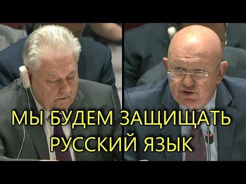 НЕБЕНЗЯ РАЗГРОМИЛ УКРАИНСКИЙ ЗАКОН О ЯЗЫКЕ В ООН