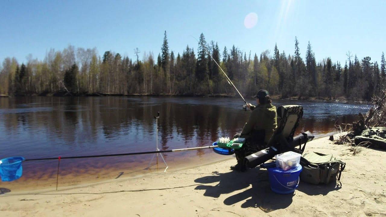 ловля плотвы на фидер на озерах