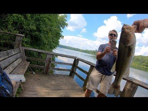 Catching Nice Bass At Piney Run MD