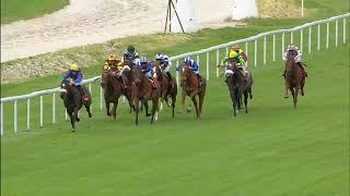 Vidéo de la course PMU PRIX F.B.A. - AYMERI DE MAULEON