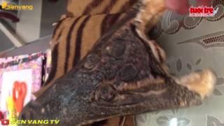 Vô tư mua bán sản phẩm từ thú rừng, Tin tức online 24h, hình sự, giải trí
