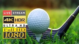 JAPAN GOLF TOUR Japan PGA Championship | Golf Today 2019 | Live Stream
