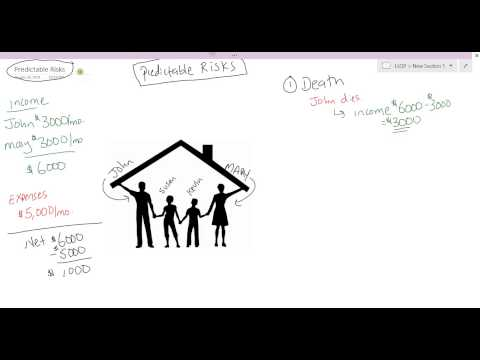 #1 - Intro: Risk Management  - The 3 Types of Risks