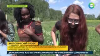 Аграрный ликбез  иностранные студенты узнали, как растет картошка   МИР24