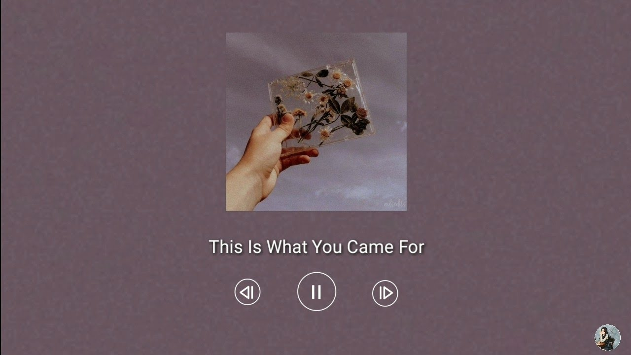 This Is What You Came For (80s remix) | Nhạc gây nghiện trên Tiktok Trung Quốc | Douyin Music