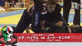 Jiu Jitsu Priest #192 Copa Bull Terrier Part.3