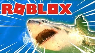 ON REAEREQUINS IN ROBLOX WITH FURIOUS JUMPER