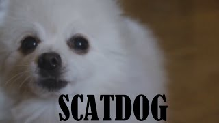 Gabe the Dog - Scatdog (Scatman John - The Scatman)