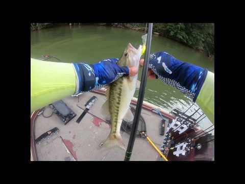 Lake Wylie Summer Bass Fishing