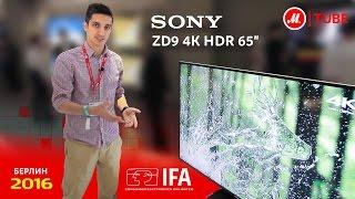 новинки IFA 2016 от Sony: телевизор ZD9 4K HDR 65