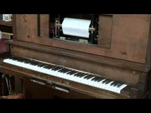 Blue Lampshade (Tom Brier) new player piano roll