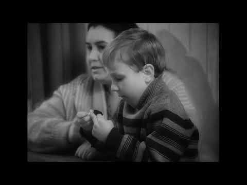 Картины из жизни провинциального комика (1997) документальный фильм