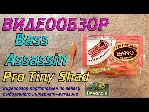 Видеообзор Bass Assassin Pro Tiny Shad по заказу Fmagazin