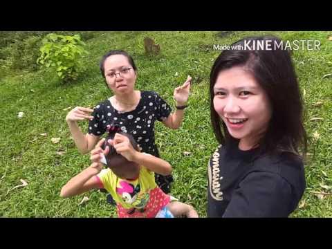 Visayas Travel Diaries