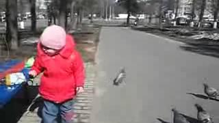Прикол. Девочка кормит голубей