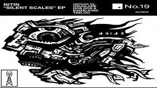 Silent Scales - Dos Dos & Einzelkind Remix