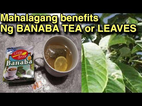 AMAZING BENEFITS OF BANABA TEA   MAHALAGANG GAMOT NG BANABA TEA  JustMJ Garin