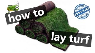 How to lay turf in 5 minutes - laying a new lawn like a professional - Lawn care