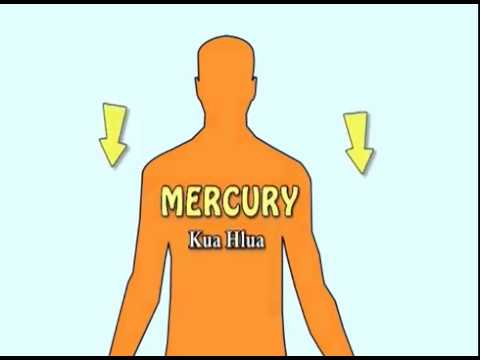 How Mercury Gets Into Fish - Hmong