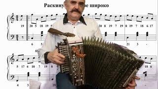 Раскинулось море широко  🍁 Уроки игры на гармони для начинающих.  The sea stretches wide accordion