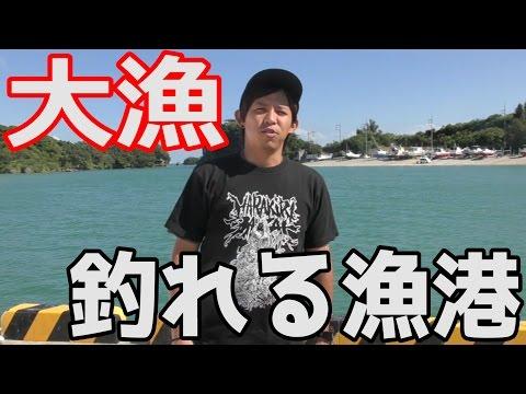めっちゃくちゃ釣れる漁港に来た!【沖縄東屋慶名】