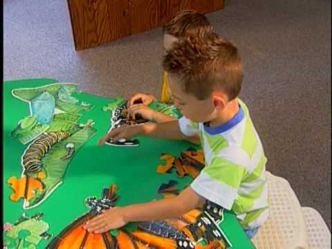 Early Learning Brain Development and Lifelong Outcomes