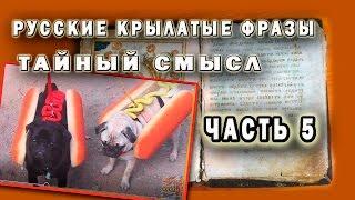 Секреты происхождения русских поговорок5