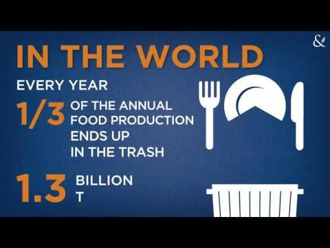 FOOD WASTE: a shame for human kind and for the environment