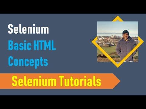 Selenium Tutorials 7 - Basic HTML Concepts thumbnail