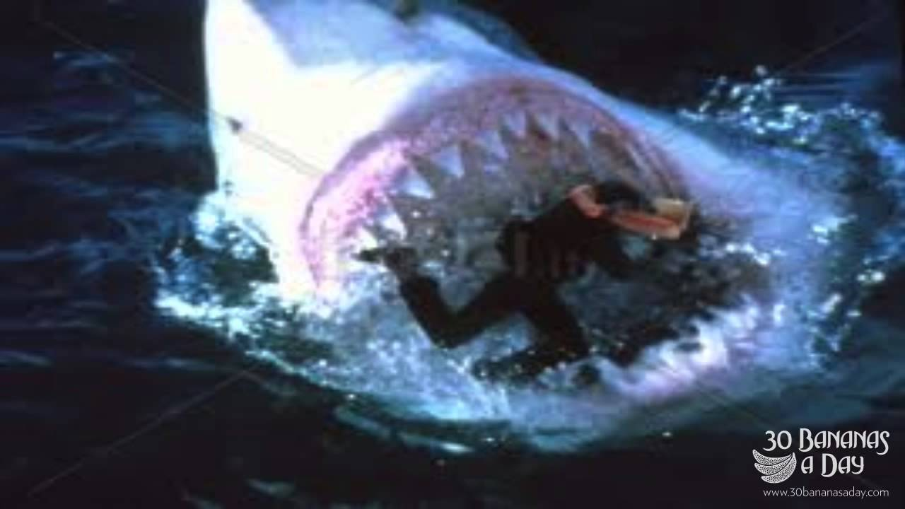 Megalodon Shark Attacks Diver Off Japan Caught On Camera ...