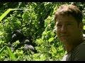 Gorilla shows Steve who's boss | Deadly 60 | Series 2 | BBC
