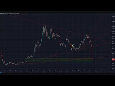 March 13th Bitcoin Cryptocurrency Alt Coin Market Update