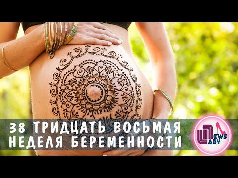 38 Тридцать восьмая неделя беременности  38 weeks pregnant