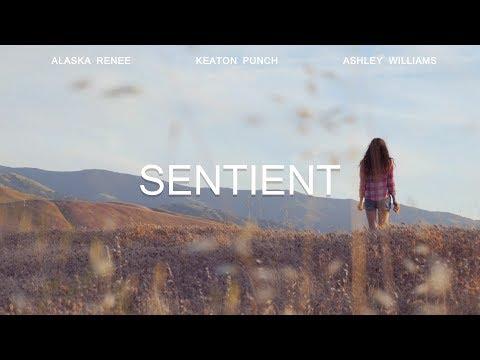 SENTIENT | SHORT FILM