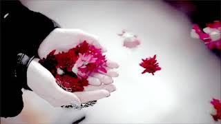 NEW Islamic Wedding Nasheed | Beautiful Arabic Wedding Nasheed (Free Music)