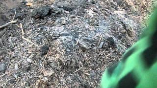 Тушим лесной пожар водой и стенкой от мангала(Вчера искали источник возгорания в полной темноте. А сегодня нашли это чудо, что задымило 2 квартала. Окапы..., 2011-08-25T19:39:29.000Z)