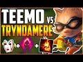 Best Teemo NA | Dark Harvest Teemo | Teemo vs Tryndamere full gameplay
