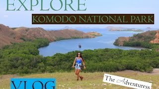 Explore Komodo National Park (Rinca Island, Kanawa Island) - Part One