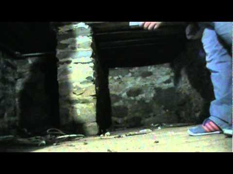 DEADBIRDISM&GHOSTHOSTS#41[crypt.rip@gmail.com]