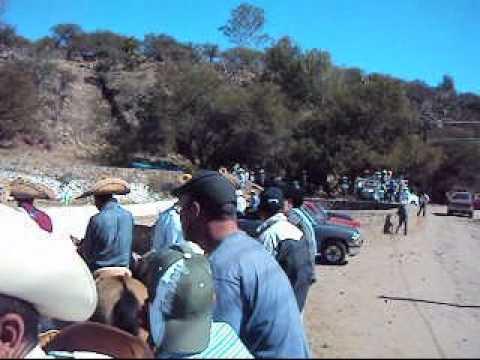 Mimbres Valparaiso Zacatecas