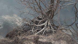 Весна в деревне Вторусское На реке Сережа