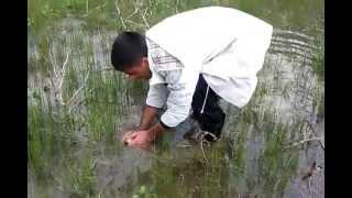 El ile Balık Avı:) Süperrr ( ERZURUM )