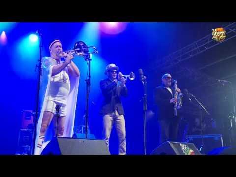 Live de Fat Freddy's Drop - Reggae Sun Ska 2016